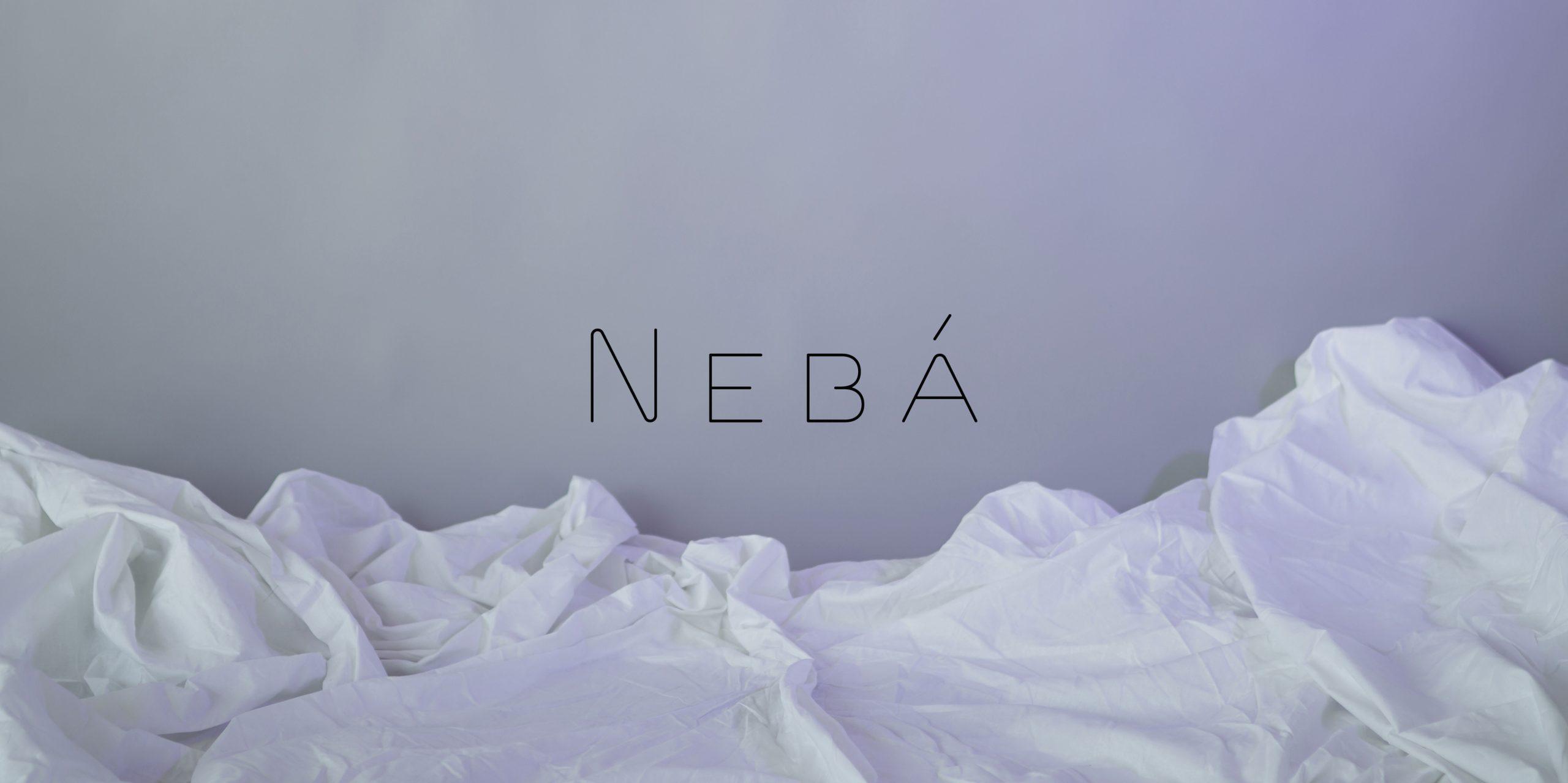 neba-banner1